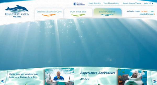 Discovery Cove web design