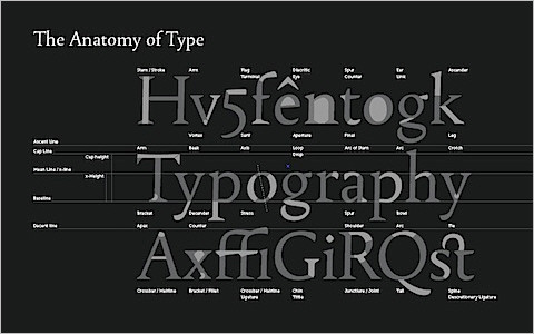 Useful Typography Resources - Wallpaper : Font Anatomy