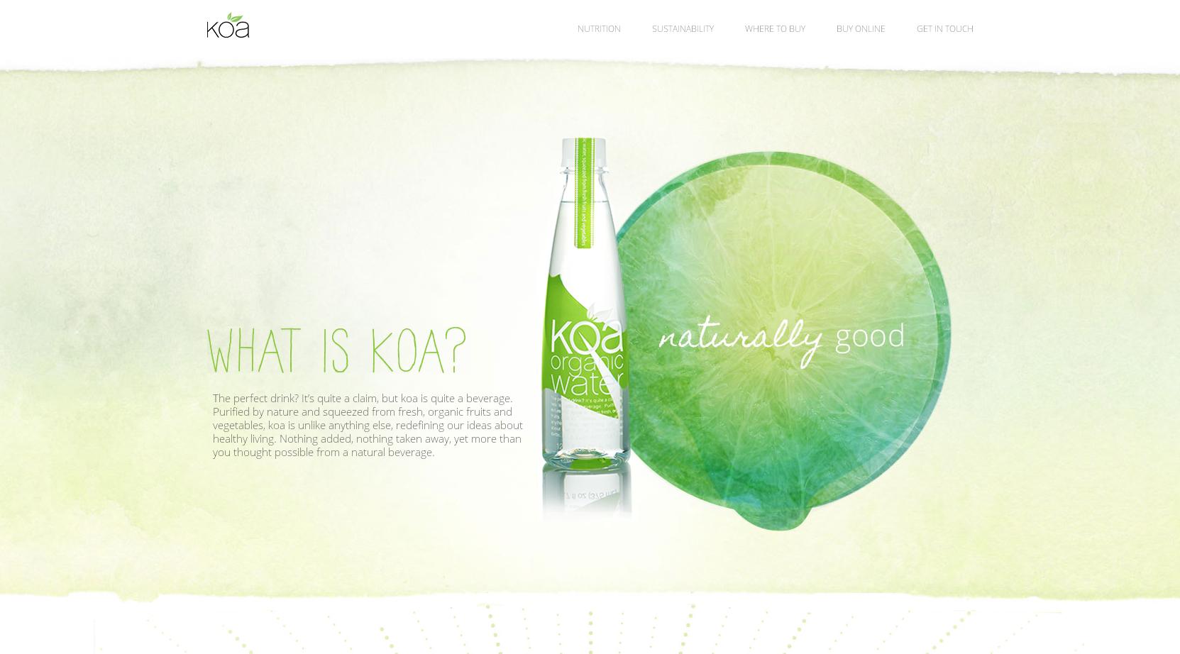 21个简约清新的网页设计