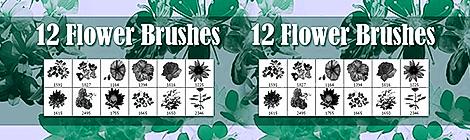 30套给设计师的免费玫瑰花笔刷下载 - 优设网 - UISDC