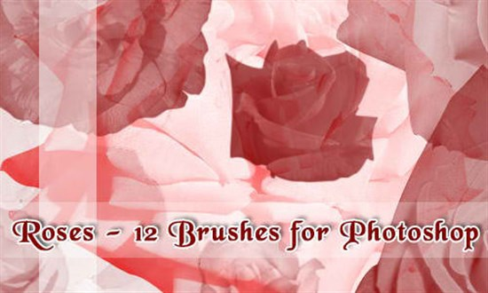14-Free-Rose-Brushes