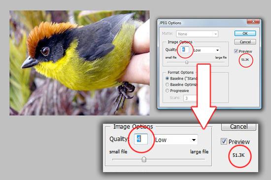 c5555b342b1fc504b9473b39a6316ddb 网页设计师必须知道的6个小技巧