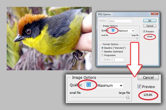 d4f172ec4e2e33468855b9f9711361d6 网页设计师必须知道的6个小技巧