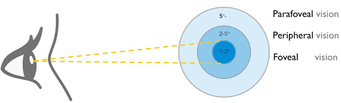 高手之路:解读眼动的12个误区