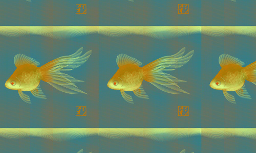 Goldfish free fish patterns