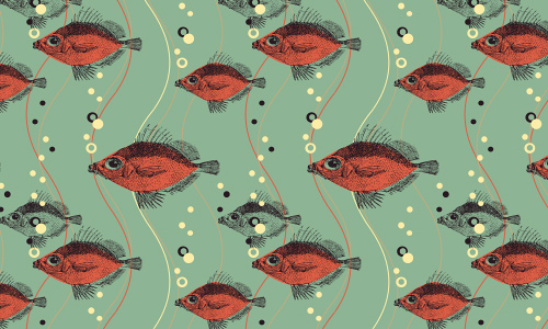 Red free fish patterns