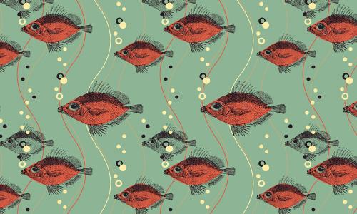 海底世界:超赞鱼儿图案免费下载