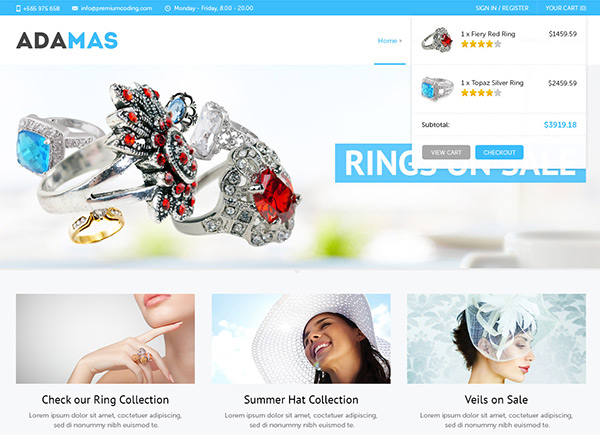 Adamas in 30 Fresh and Free PSD Website Templates