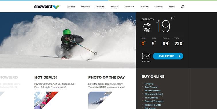 Snowbird homepage clean web design modern responsive web inspiration