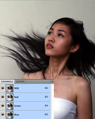 quick selection tool in photoshop 12 Photoshop中的5个快速选择工具