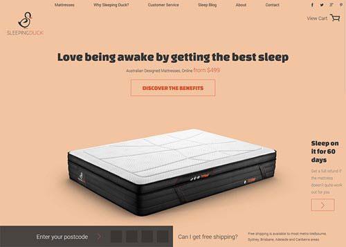 Sleeping Duck 网页设计欣赏