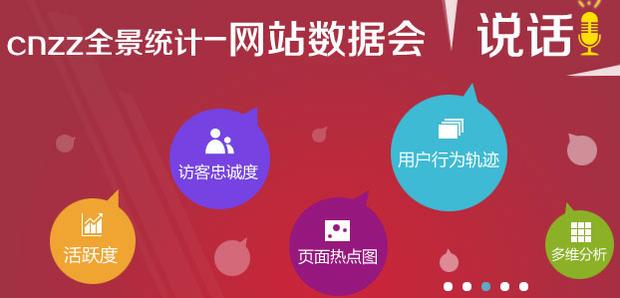 中国网站统计史!野路子里踏出的春天