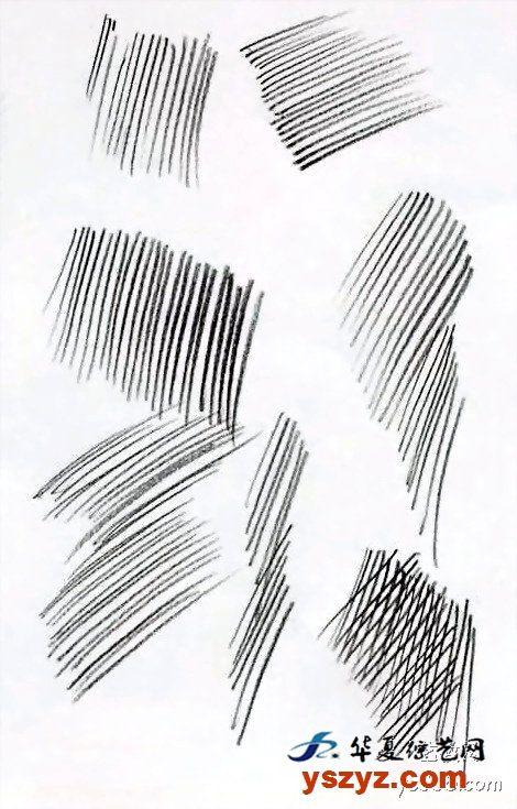 非科班同学有福啦!手把手教你从零基础开始学素描!
