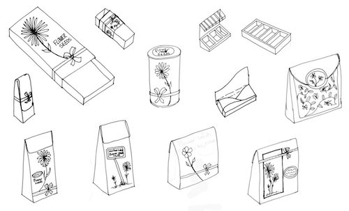 flower-seed-packaging-sketches-preview1.jpg