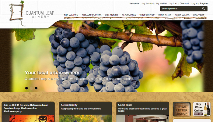 10-quantum-leap-winery-homepage-layout