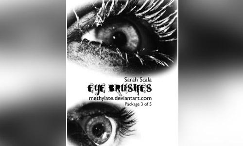 methylate eye brushes free