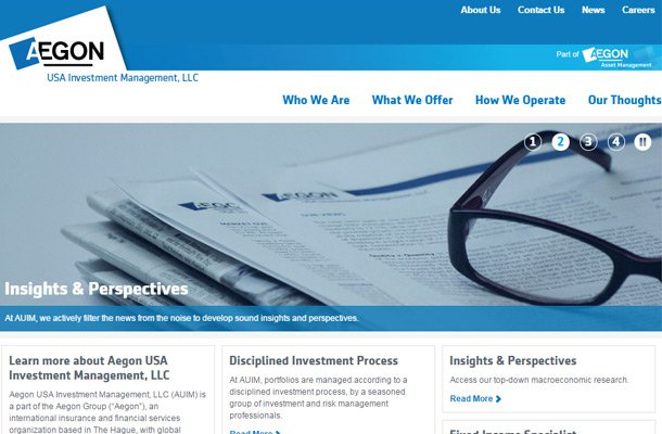 aegon investments management group