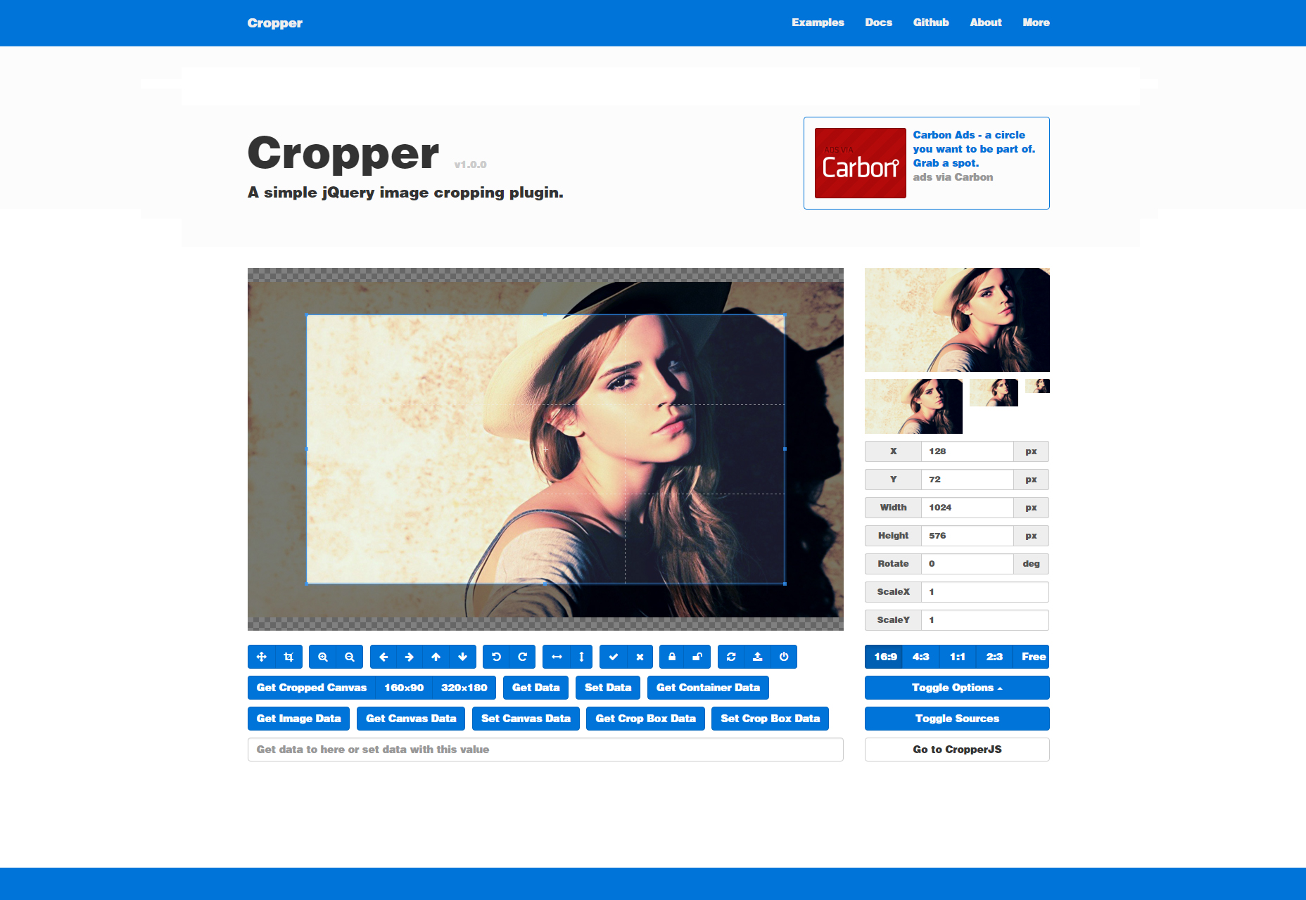 cropper-simple-image-cropping-jquery-plugin