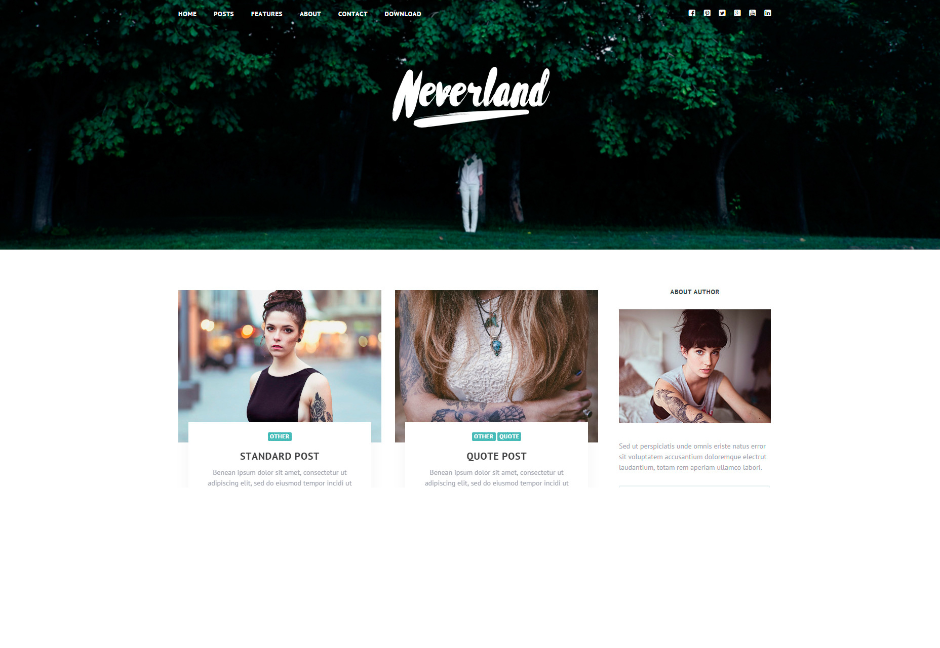 neverland-free-personal-blog-wordpress-theme