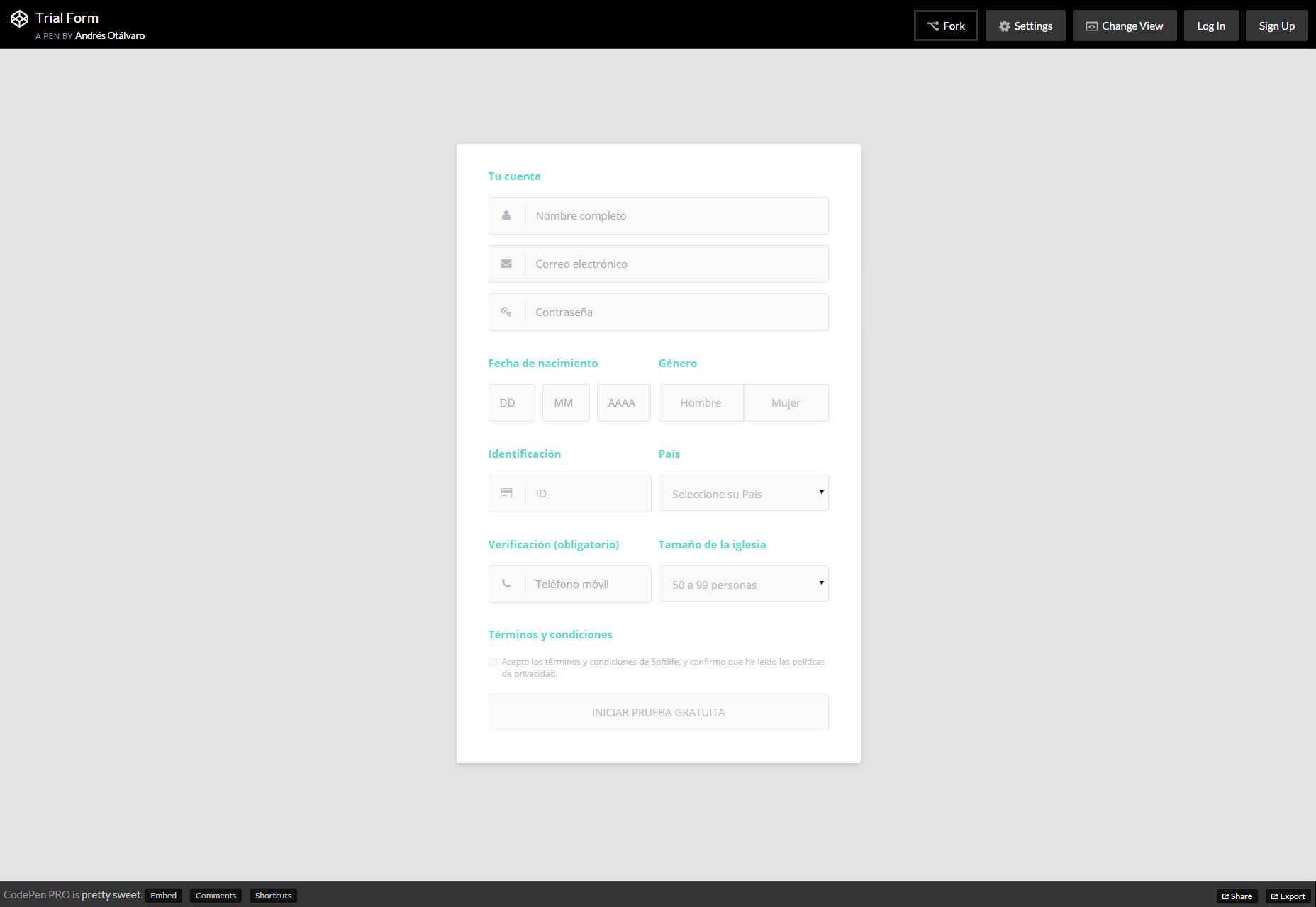 trial-form-nice-css-form-template