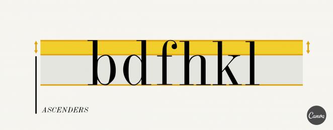 包容所有人!如何为网站挑选可访问性良好的英文字体?