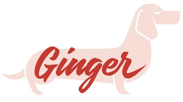 20-Ginger