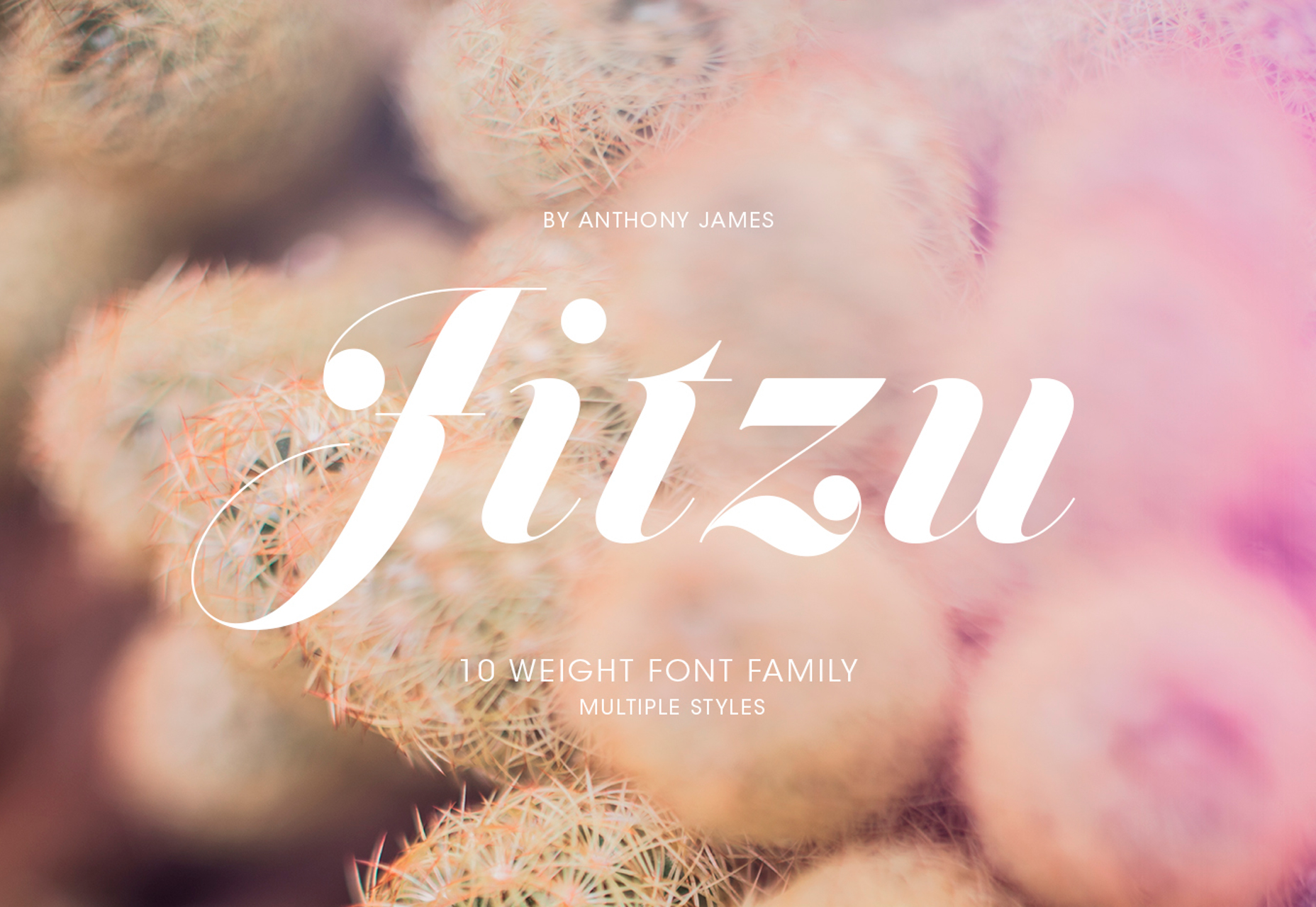 jitzu-fancy-10-weight-didone-typeface