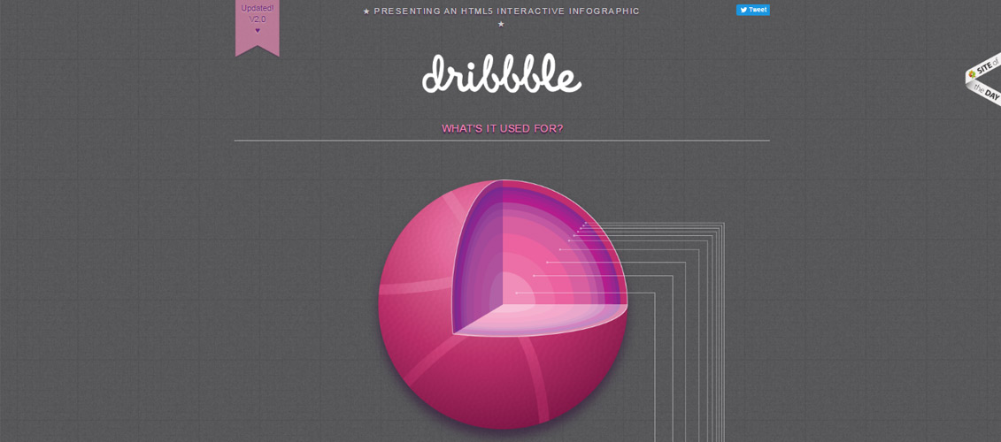 Dribbble-Interactive-Infographic