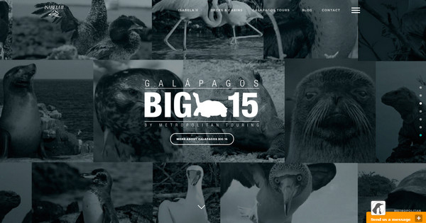 17-Isabella-Galapagos-Cruise