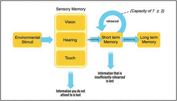 """提高易用性!设计师应该了解的""""用户记忆理论"""""""