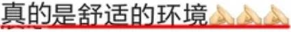 1个LOGO改4年,毙掉70稿?!赵又廷是个什么地狱甲方?