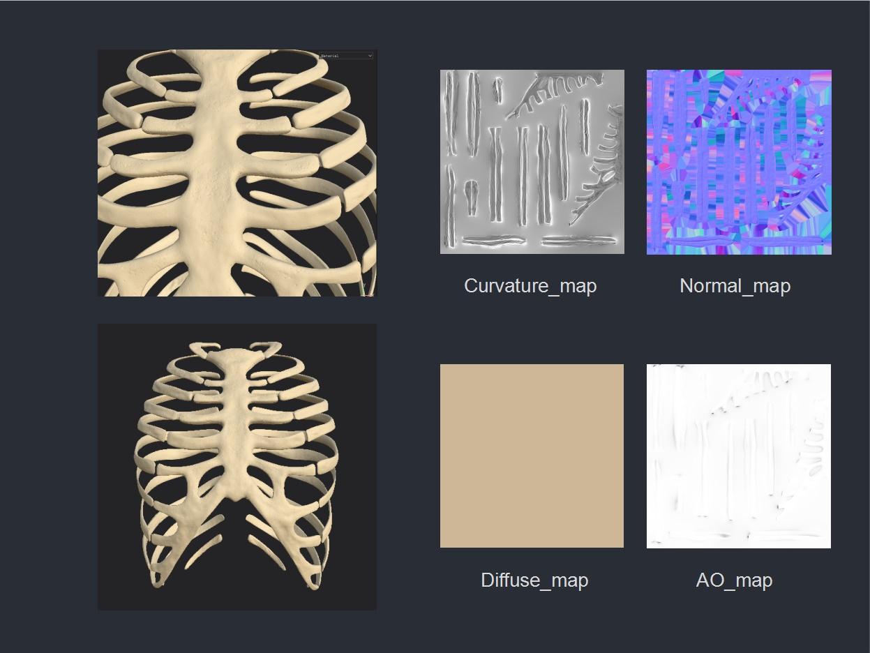 专业的设计流程是怎样的?来看腾讯的医学可视化探索案例!