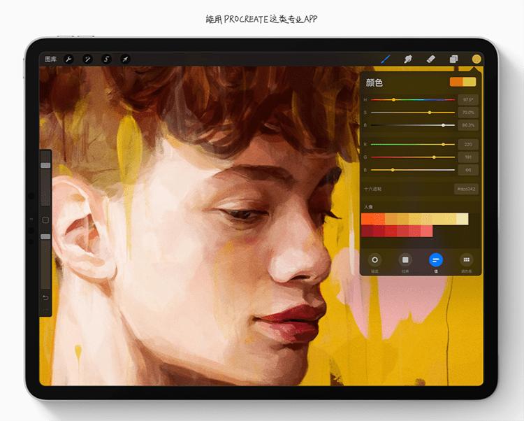 数位屏和iPad哪个更适合画画?来看这个超详细的分析评测