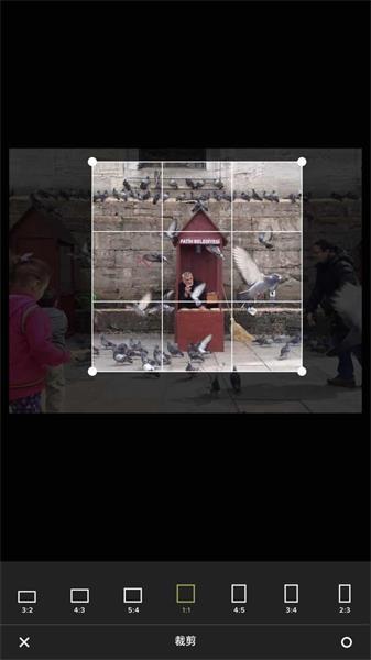 实战案例!全面解析一张 IPPA 获奖照片的诞生过程