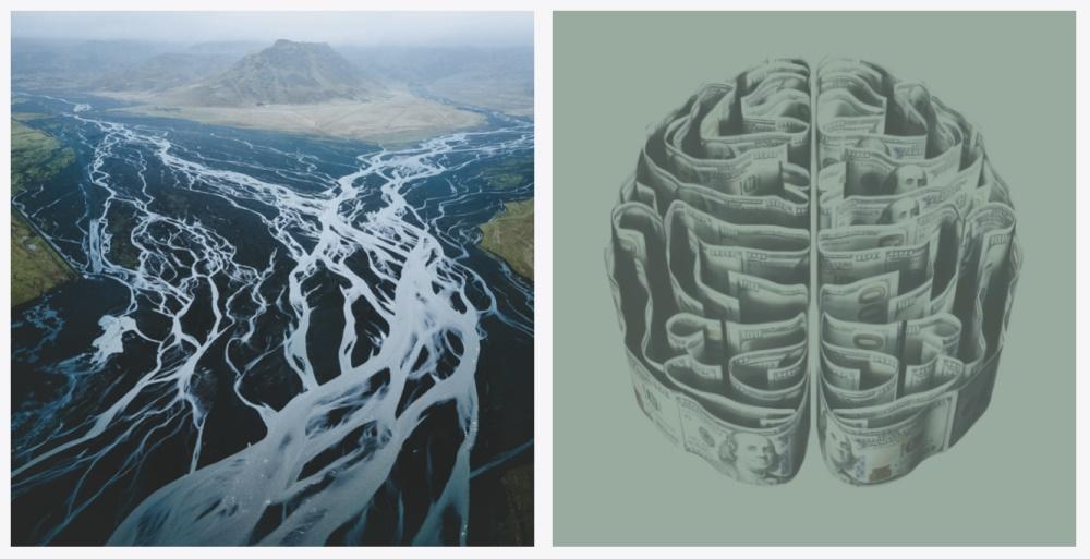 从大自然这位设计师身上,我们能学到什么?