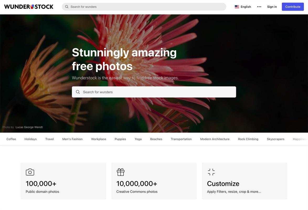 千万张图片免费用!Wunderstock 这个网站太良心了!