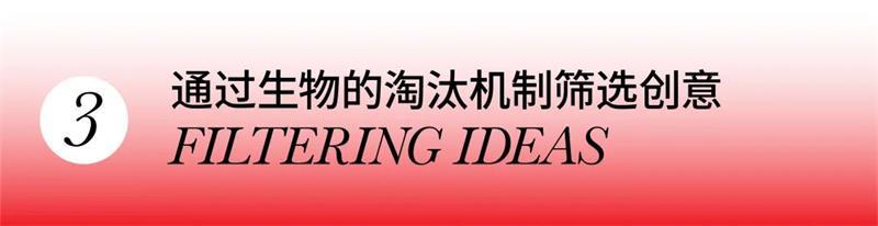 揭秘太刀川英辅的创作秘诀,学到就是赚到!